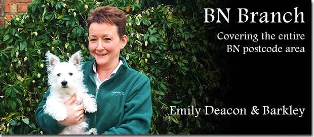 Brighton dog boarding Franchisee Emily Deacon with her dog Barkley