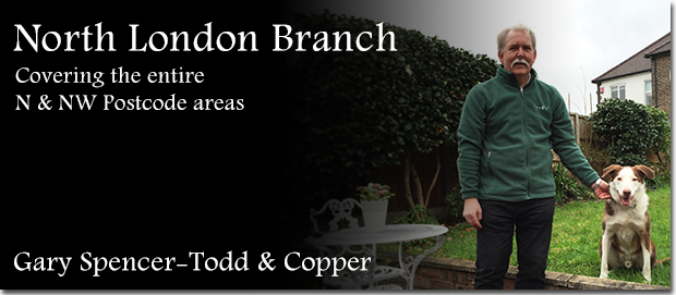 North London dog boarding franchisee Gary Spencer-Todd