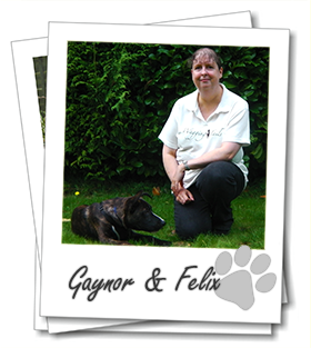 Owner of Guildford dog boarding service Wagging Tails Gaynor Austin with her dog Felix