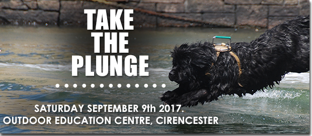 Take the Plunge 2017 in aid of Hearing Dogs For Deaf People