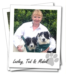 Lesley Birch owner of Tonbridge dog boarding franchise Wagging Tails