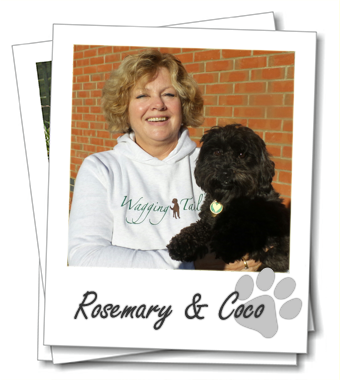 Rosemary Gooch owner of Portsmouth dog boarding franchise Wagging Tails