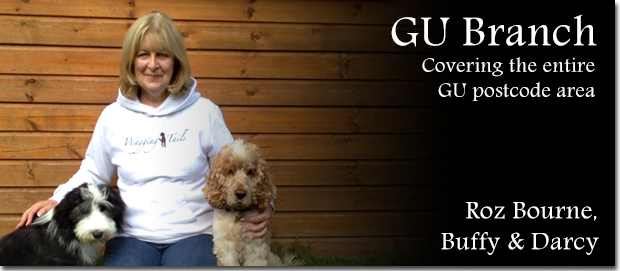 Guildford Dog Boarding - Roz Bourne with her dogs