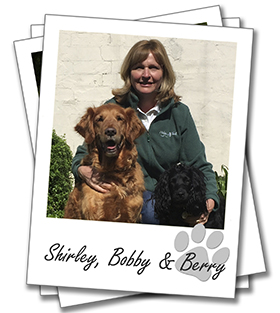Peterborough dog boarding. Shirley Lilley pictured with her dogs Bobby and Berry