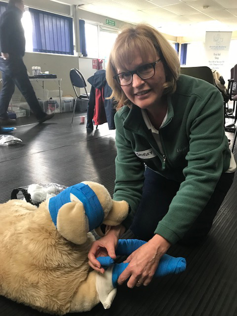 Shirley Lilley from Wagging Tails Peterborough enjoying the Animal Aiders first aid training course