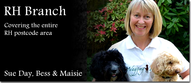 Wagging Tails Surrey franchisee Sue Day with her dogs Maisie and Bess