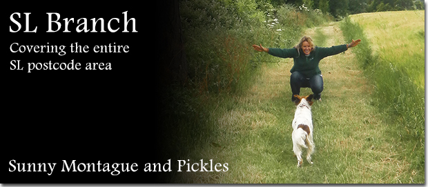 Berkshire dog boarding Franchisee Sunny Montague with her Springer Spaniel Pickles