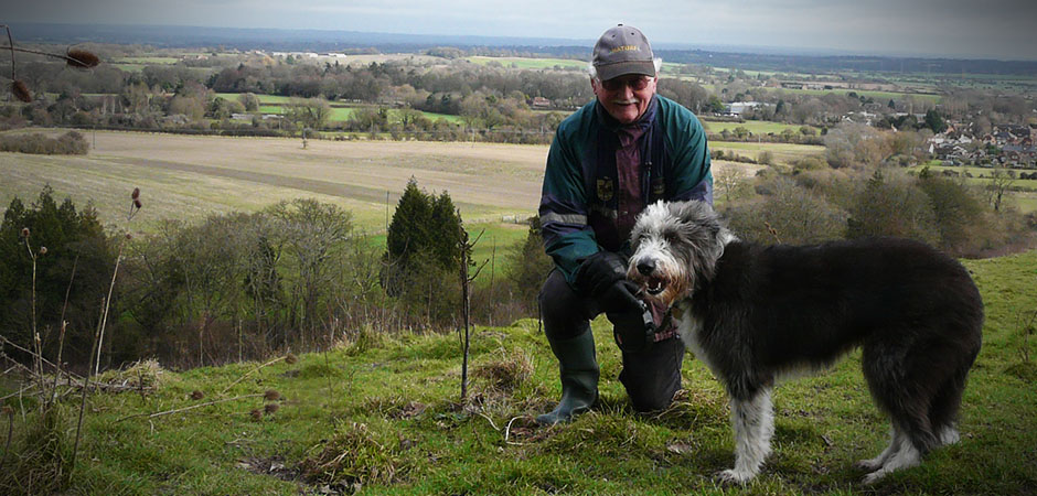 Become a dog carer & Home Dog Boarding | Dog Sitting Alternative to Kennels | Wagging Tails