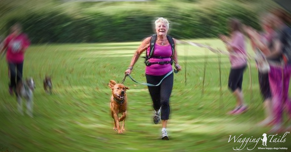 Chief completes a 5k run with Oxfordshire Dog Carer Pennie