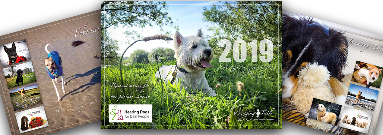 Wagging Tails 2019 Charity Calendar in support of Hearing Dogs for Deaf People