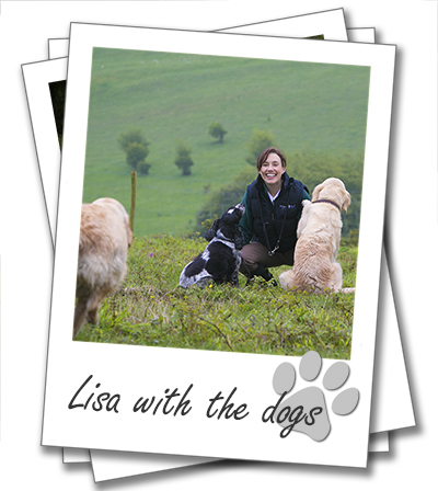 Lisa Suswain, found and director of Wagging Tails with her dogs