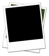 Blank polaroid image