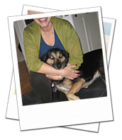 Madi enjoyed a lovely holiday with dog carer Ann in Oxfordshire