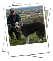 Shambles pictured with carer David on her East Sussex dog boarding holiday