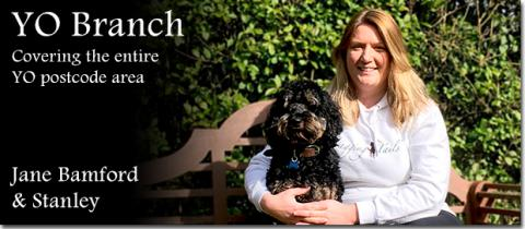 Wagging Tails Yorkshire Dog Boarding Jane Bamford and her dog Stanley