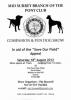 Mid Surrey Pony Club Dog Show